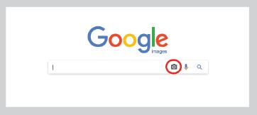 visually similar search - image - camera icon